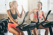 Attractive Young Women Working Out Together On Exercise Bike At The Gym. poster