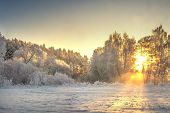 Vibrant Christmas Winter Landscape On Sunrise. Warm Sunlight In Morning Winter Nature. Frost And Fog poster