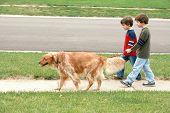 Постер, плакат: Мальчики прогулки с собакой