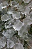 ice cubes on grass