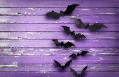 halloween, decoration and scary concept - black bats flying over ultra violet shabby boards backgrou poster