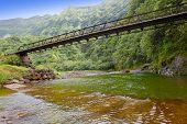 Tahiti. The bridge through the river in mountains.