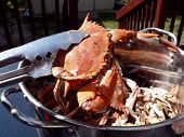 Crab - Cooked Blue Crabs In Pot poster