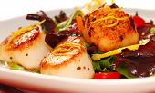 Scallops With A Fresh Salad
