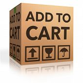 add to cart and buy here and now web shop shopping icon for online webshop