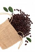 Coffee beans in a hessian sack with leaf sprigs over white background.