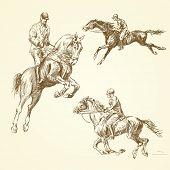 hand drawn horses