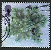 UK - CIRCA 2002: A stamp printed in UK shows image of the Blue Spruce Star, circa 2002.