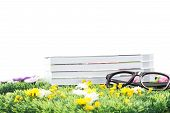 Books and black glasses on a flowering meadow