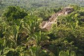 stock photo of atonement  - aerial view of Lamanai maya ruins in the tropical jungle of Belize - JPG