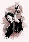 picture of double-bass  - Vector illustration  - JPG