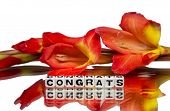 image of congrats  - Congrats with red flowers on white background - JPG