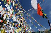 stock photo of buddhist  - One of the most important churches for Tibetans Kalaczakra temples in Dharamsala Buddhist prayer flags McLeod Ganj India - JPG