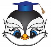 Cartoon Bird In A Square Academic Cap