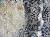 Calcium Mineral Deposit Grunge Texture 3