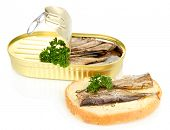 picture of hermetic  - Open tin can with sardines and tasty sandwich - JPG