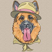 Vector Funny Cartoon Hipster Dog German Shepherd