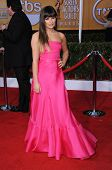 LOS ANGELES - JAN 27:  Lea Michele arrives to the SAG Awards 2013  on January 27, 2013 in Los Angele