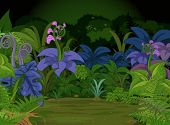 Jungle landscape with many different plants and flowers