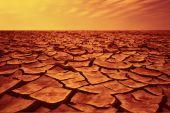 Dry Desert