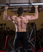 Chin-Ups workout in the gym