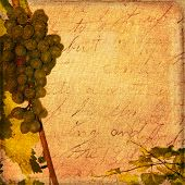 Aged paper with grapes antique scrapbook background