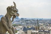 foto of gargoyles  - Gargoyle statue with paris aerial view in the background from Notre - JPG