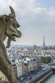 stock photo of gargoyles  - Gargoyle statue with paris aerial view in the background from Notre - JPG