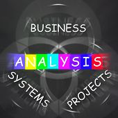 Analysis Displays Analyzing Business Systems And Projects