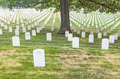 Gravestones on Arlington National Cemetery