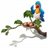Illustration of a parrot at the branch of a tree with a nest on a white background