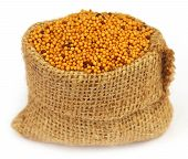 Golden Mustard In A Sack Bag