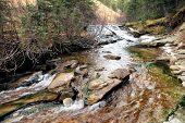 Creek...