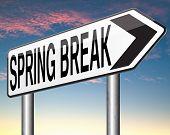 picture of spring break  - spring break holiday or school vacation     - JPG