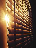 Sun Through the Blinds