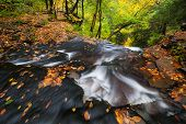 Pennsylvania Ricketts Glen State Park Autumn Landscape