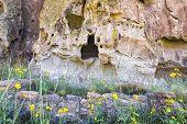 Cave Dwellings In Bandelier