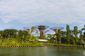 The Botanical Of Garden By The Bay