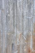 picture of light-pole  - A light wood texture taken from a telephone pole