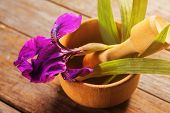 Irises Herbs In Mortar With Pestle