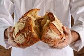 pic of only mature adults  - Chef holding fresh bread - JPG
