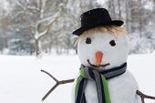 Cute snowman standing in the park wearing a hat