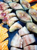 Frozen Fish Meat