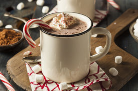 stock photo of peppermint  - Homemade Peppermint Hot Chocolate with Whipped Cream - JPG
