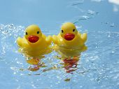 stock photo of baby duck  - Two baby rubber duckies jumping the waves - JPG
