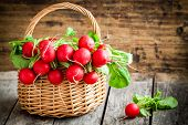 foto of radish  - bright fresh organic radishes with leaves in a basket on wooden background - JPG