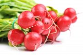 picture of radish  - bunch of red radish with leaves isolated on white - JPG