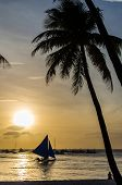 pic of boracay  - Sailing boat under sail on the horizon and silhouette of people sitting and admiring of beautiful sunset under palm tree at tropical exotic white beach on Boracay Philippines - JPG