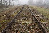 picture of municipal  - Old railway line  - JPG