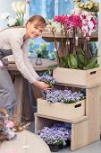 stock photo of flower shop  - Look at this wonder - JPG